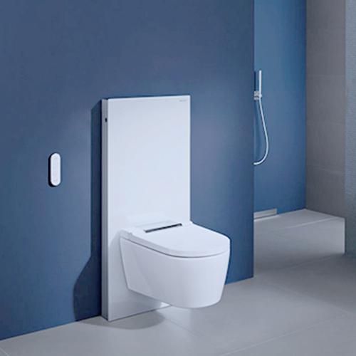 Mit einem Sanitärmodul können moderne WCs einfach nachgerüstet werden.